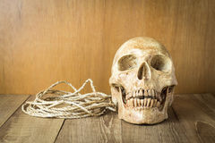 Schädel mit Seilstillleben auf hölzernem Hintergrund Stockfotografie