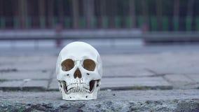 Schädel nahe der Straße Aufmerksamkeits-Gefahr auf dem Verkehrsunfall-Mord stock video