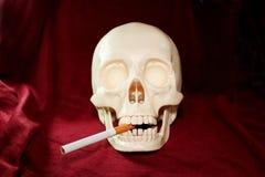 Schädel raucht eine Zigarette Stockbild