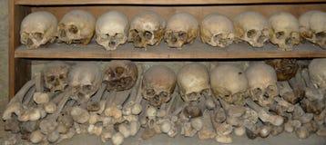 Schädel und Überreste von Bindungen Stockfoto