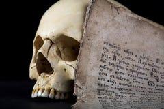 Schädel und altes Manuskript lizenzfreie stockbilder