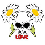 Schädel und Blumen Gänseblümchen und Kopf des Skeletts Lizenzfreie Stockbilder