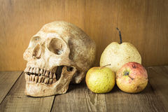 Schädel- und Brandwundenfruchtstillleben auf hölzernem Hintergrund Stockfotografie