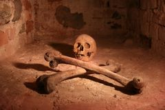 Schädel und gekreuzte Knochen Lizenzfreie Stockbilder