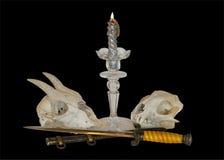 Schädel und Kerze 16 Stockbild