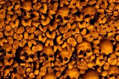 Schädel und Knochen Stockfoto