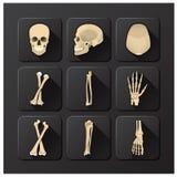Schädel und Knochen medizinisch und Gesundheits-Ikonen-Satz Lizenzfreie Stockfotos