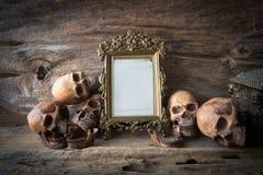 Schädel und Rahmen, Stillleben Stockbild