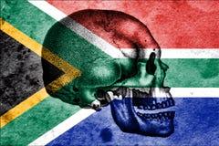 Schädel und südafrikanische Flagge, die Wiege der Menschheit bedeutend Lizenzfreie Stockfotos
