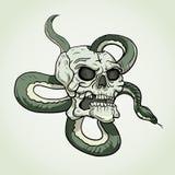 Schädel-und Schlangen-Tätowierung Stockbilder