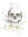 Schädelskizze u. Blumenkalligraphieverzierung Lizenzfreie Stockbilder
