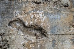 Schädigende Wand Stockfoto