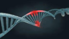 Schädigender blauer Ribonuclein- Säure- oder DNA-Strang Lizenzfreies Stockbild