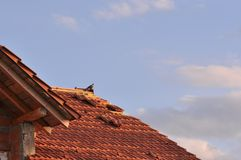 Schädigendes Dach lizenzfreie stockfotos