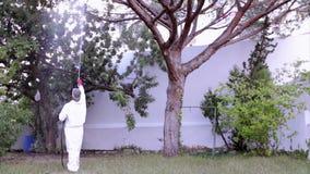 Schädlingsbekämpfung, die in Kiefer sprüht stock video