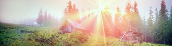 Schäferhütten in einem nebelhaften Wald Lizenzfreie Stockfotos