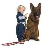 Schäferhundhund mit dem Jungen, der Leine anbringt Lizenzfreies Stockbild