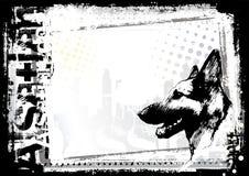 Schäferhundhundehintergrund Lizenzfreies Stockfoto