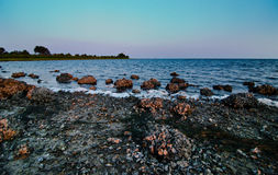 Schälen Sie abgedeckte Steine auf dem Ufer der Str.-Markierungen Lizenzfreie Stockfotos