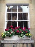 Schärpe-Fenster und Blumen-Kasten Stockbilder