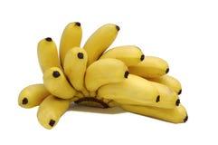Schätzchen-Bananen Stockfotos