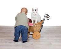 Schätzchen, das einer Katze eine Fahrt in einem Pram gibt stockbild