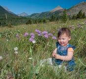 Schätzchen, das im Gras mit Blumen sitzt Lizenzfreie Stockfotografie