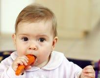 Schätzchen, das Karotte isst Stockfoto