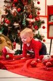Schätzchen in der Weihnachtszeit Stockfoto