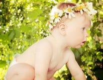 Schätzchen in einem Blumen-Kranz Lizenzfreies Stockfoto