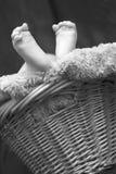 Schätzchen-Füße Stockfotografie