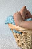 Schätzchen-Füße Lizenzfreies Stockbild