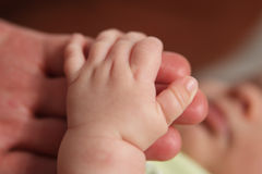 Schätzchen-Hände Stockfoto