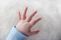 Schätzchen-Hand Stockfotografie