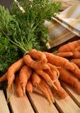 Schätzchen-Karotten getrennt Lizenzfreie Stockfotos
