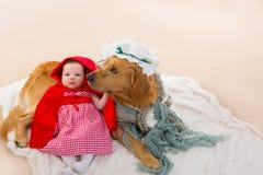 Schätzchen-kleines Rotkäppchen mit Wolfhund als Großmutter Stockbilder