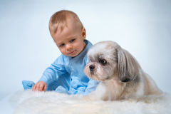Schätzchen mit Hund Stockbild