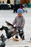 Schätzchen mit Tauben stockfotografie