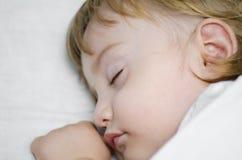 Schätzchen-Schlaf Stockbild