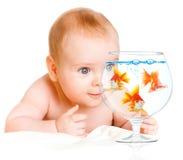 Schätzchen und goldfishs lizenzfreie stockbilder