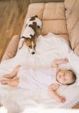 Schätzchen und Hund Stockbilder