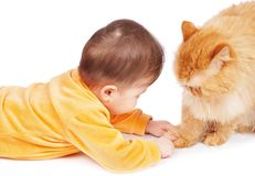 Schätzchen und Katze Stockbilder