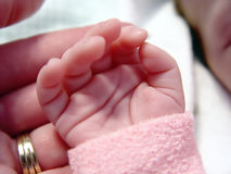 Schätzchen wenig Hand Lizenzfreie Stockfotos
