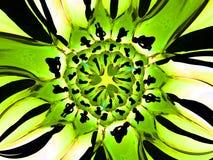 Schätzchen-Zellen 4 Stockfoto