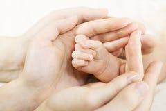 Schätzchenhand in Muttergesellschafthände. Familienkonzept Stockfotografie
