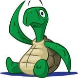 Schätzchenschildkröte Stockbild
