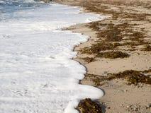 Schäumende Wellen Stockfotos