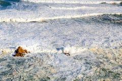 Schäumende Wellen Lizenzfreies Stockfoto
