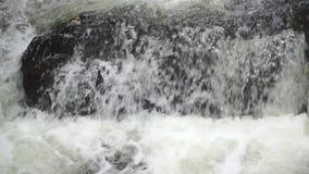 Schäumender tropischer Wasserfall, nahes hohes Video der Zeitlupe stock video