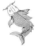 Schéma tiré par la main de carpe de Koi de poissons Image libre de droits